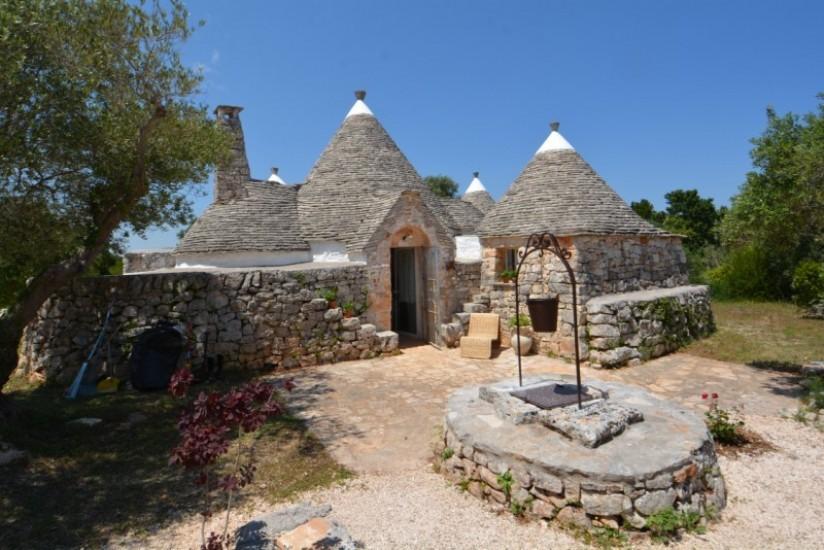 Country/Farmhouse Cisternino - Cisternino