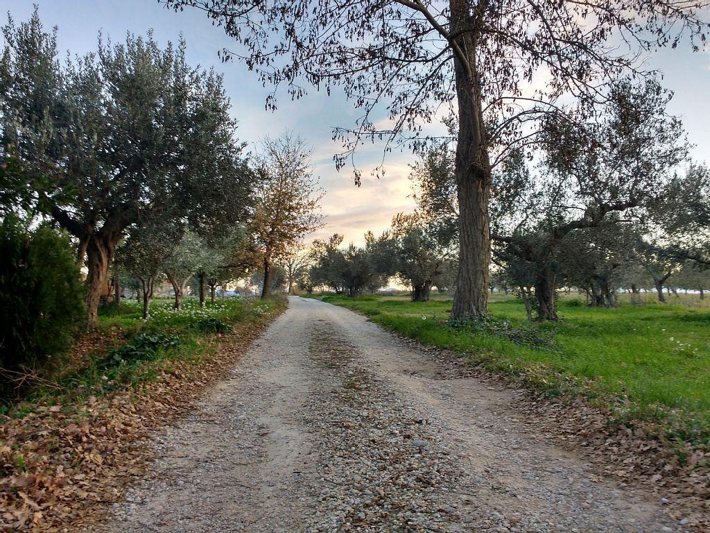 Maison de campagne/ferme Lanciano - Lanciano