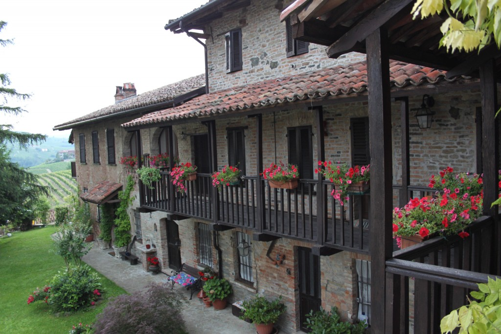 Rustic farmhouse apartment of 600 between the vineyards - Calosso