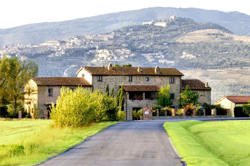 Villa in Tuscany casa vacanze - Cortona