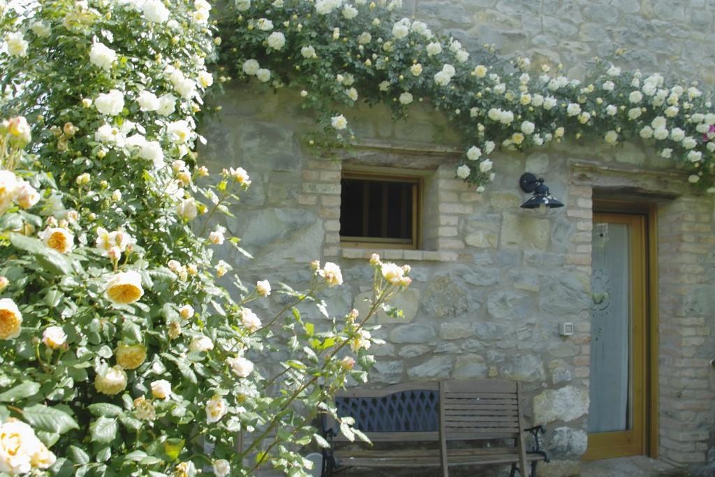 Ca' di Minù ferienhausin in den Hüge von Prosecco - Tarzo