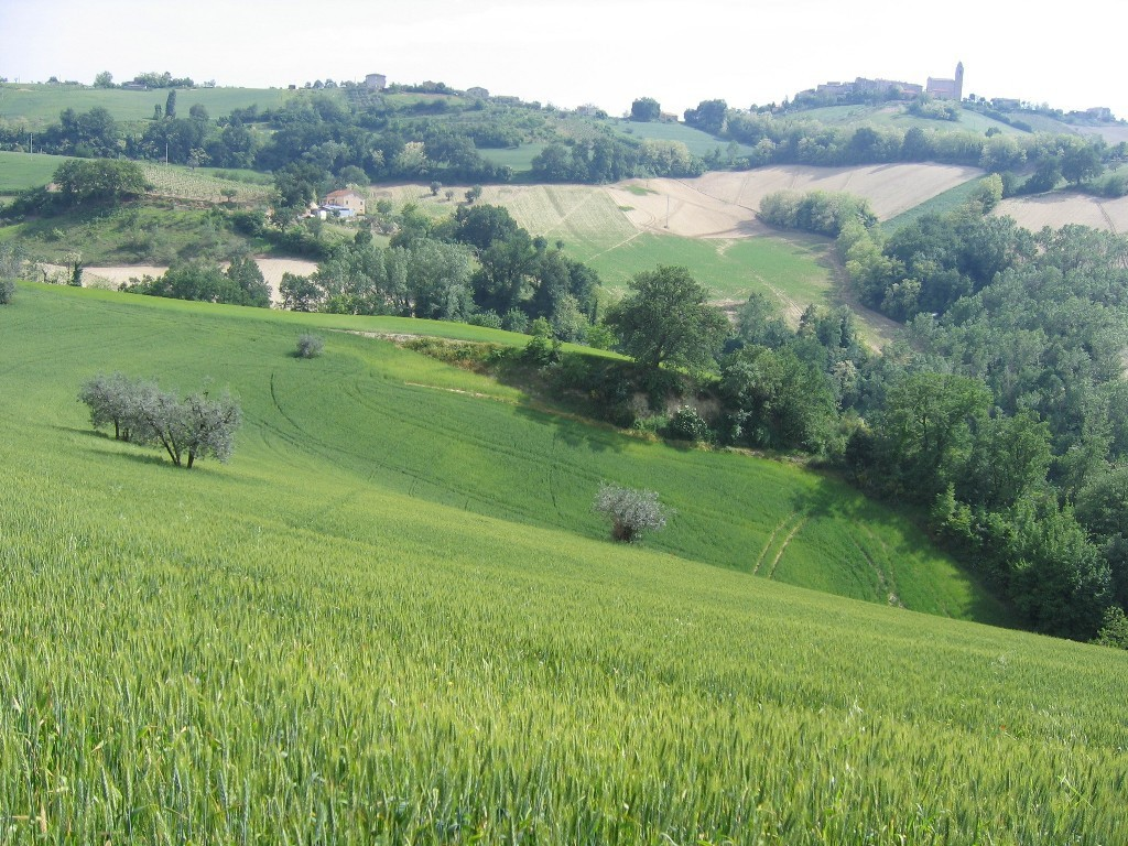 Magnifique Maiason de campagne  - Petritoli