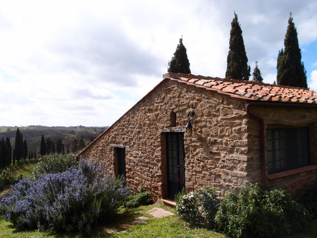 cottage between the hills of Maremma - Magliano in Toscana