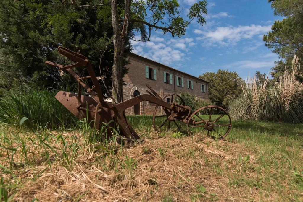 Maison de campagne/ferme Mondavio - Mondavio