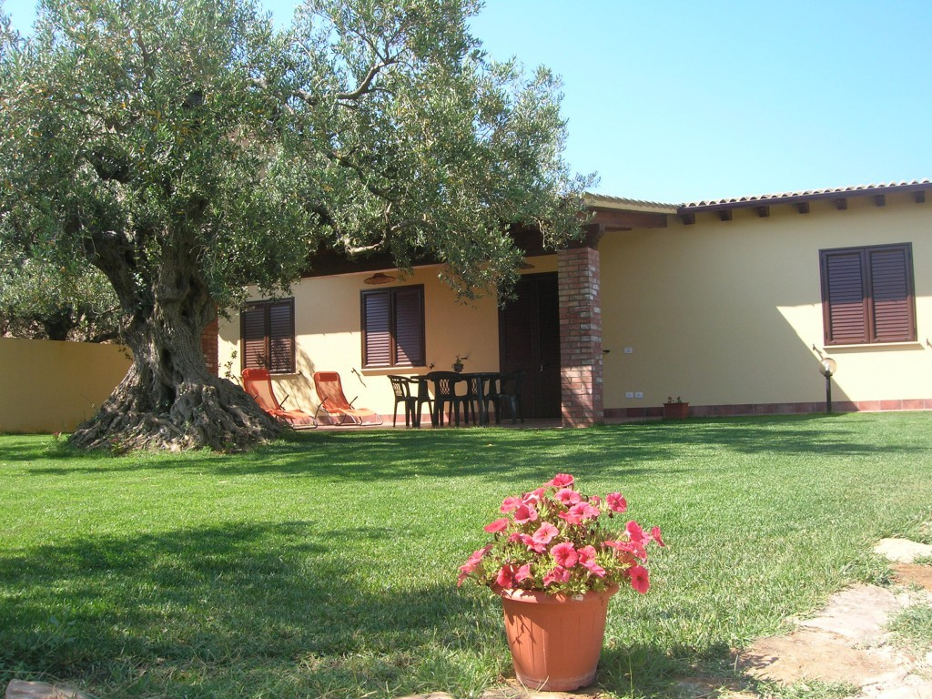 Casa Immersa fra ulivi secolari - Sciacca