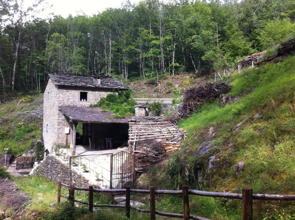The Ancient water Mill - Ortignano Raggiolo
