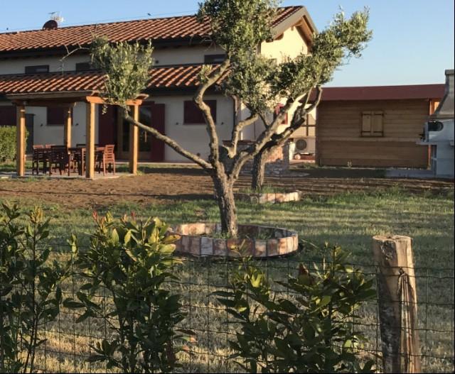 Country/Farmhouse Marina di Castagneto Carducci - Castagneto Carducci