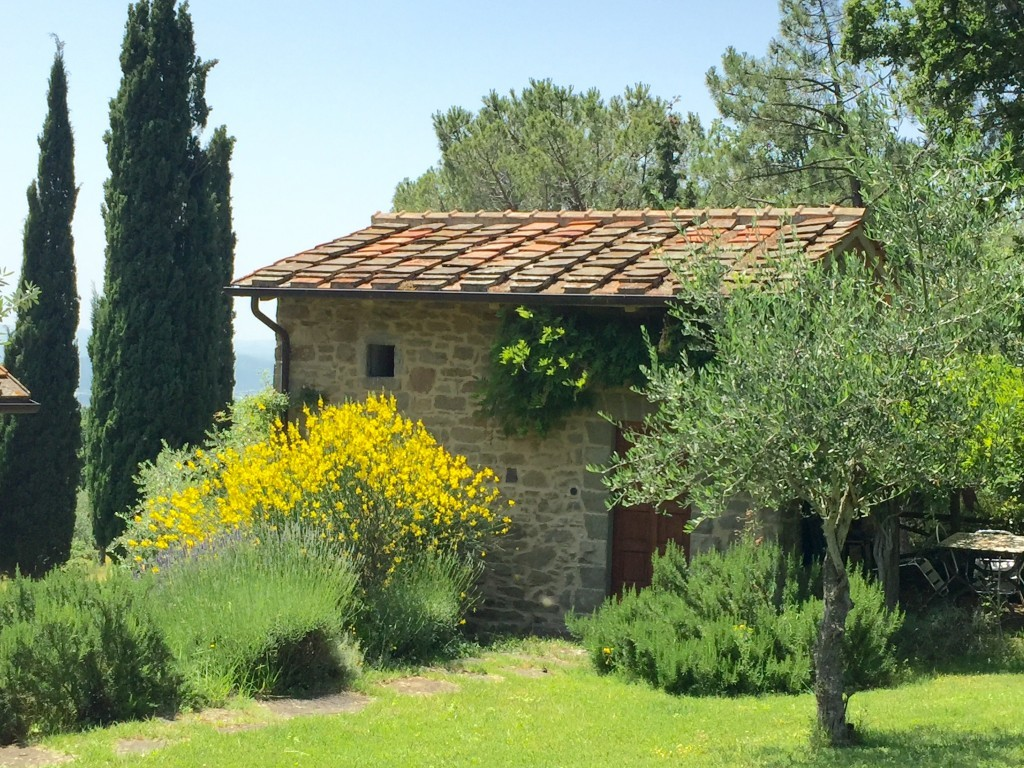 Small ancient farmhouse with pool in the heart of Tuscany - Loro Ciuffenna