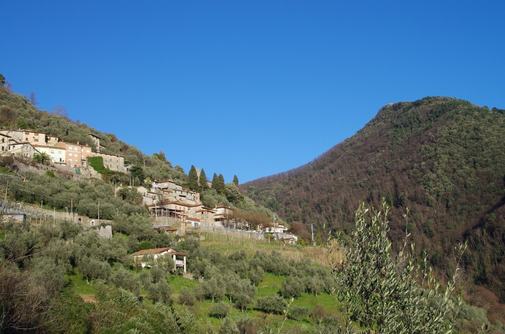 RURAL COMFORTABLE HOUSE equipped with A/C & WiFi - Camaiore