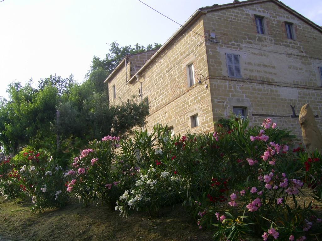 Bauernhaus Penna San Giovanni - Penna San Giovanni