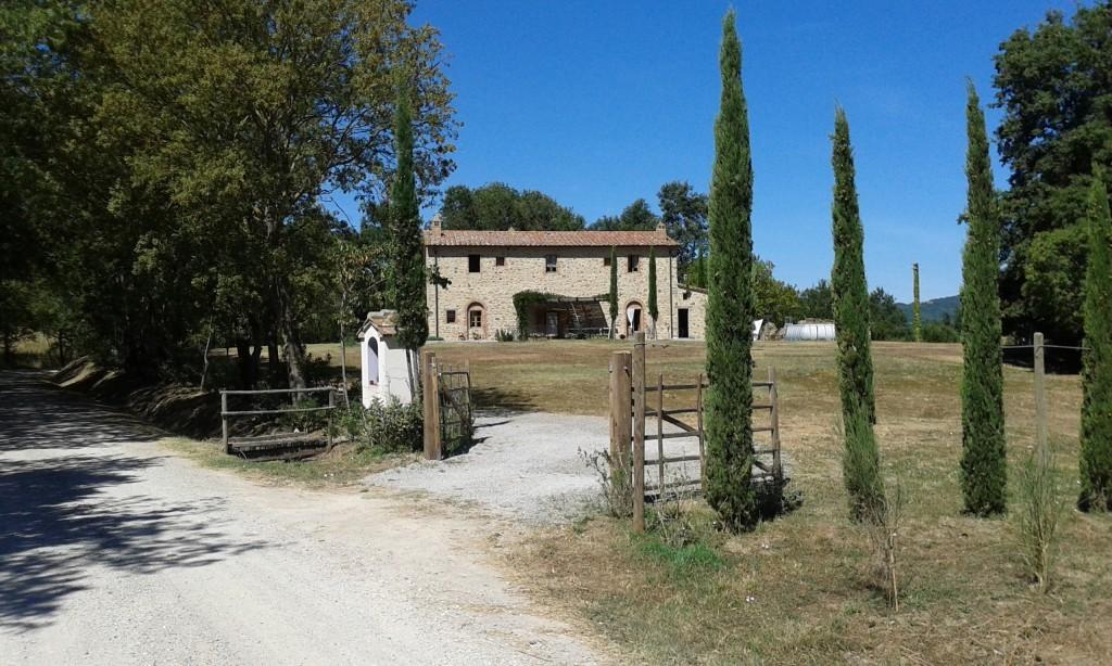 Bauernhaus Scansano - Scansano