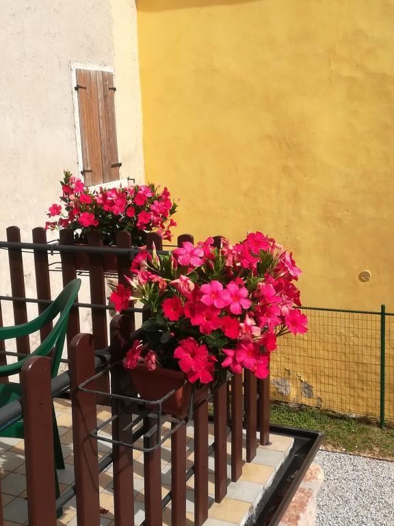 Country/Farmhouse Caprino Veronese - Caprino Veronese