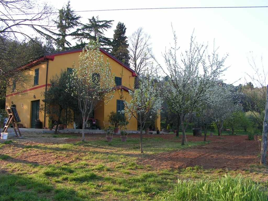 Ancient farmhouse in the green hills of Lucca - Lucca